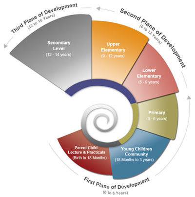 A spiral diagram of the planes of development, part of the Montessori program overview