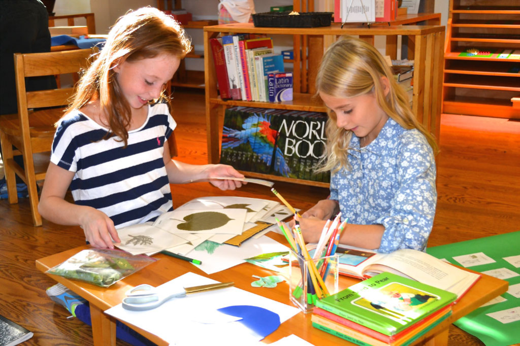 Girls in a Montessori elementary classroom work together on a research project.