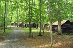 A road in a wooded area with rustic cabins.
