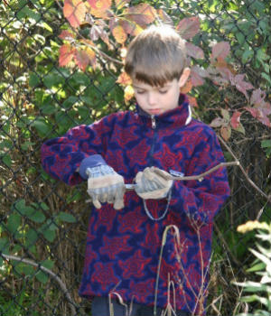 A boy carefully whittles a stick during autumn self-directed playtime.