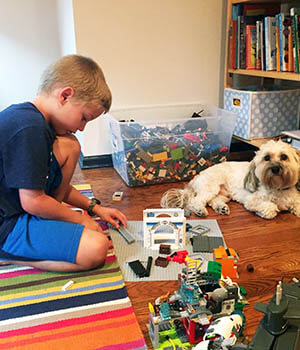 With his dog watching, a boy plays with legos, creating a space for children.