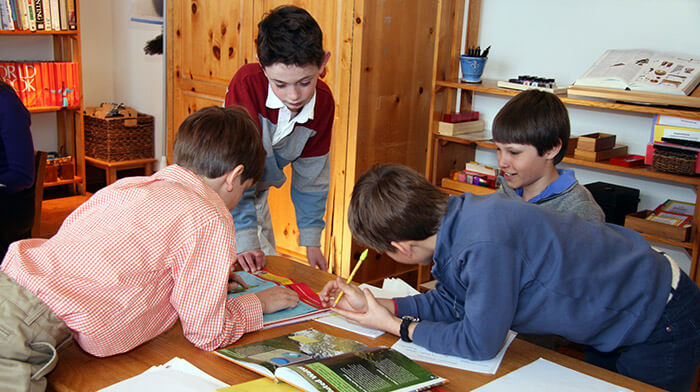 A group of four boys in a Montessori elementary classroom work together on a researach project.