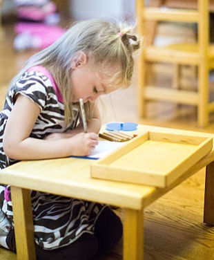 A Montessori Primary student uses the metal inset material to practice control of her pencil movements.
