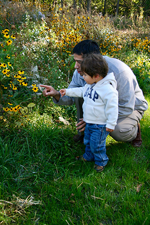 A Montessori parent and his young son closely observe a yellow flower.