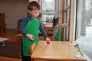 A child in a Montessori Primary classroom scrubs a table.