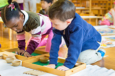 Children in a Montessori Primary Classroom collaborate on math work.