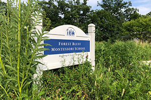 A Forest Bluff School sign sits outside of the school amidst tall prairie plants that comprise the living land laboratory.