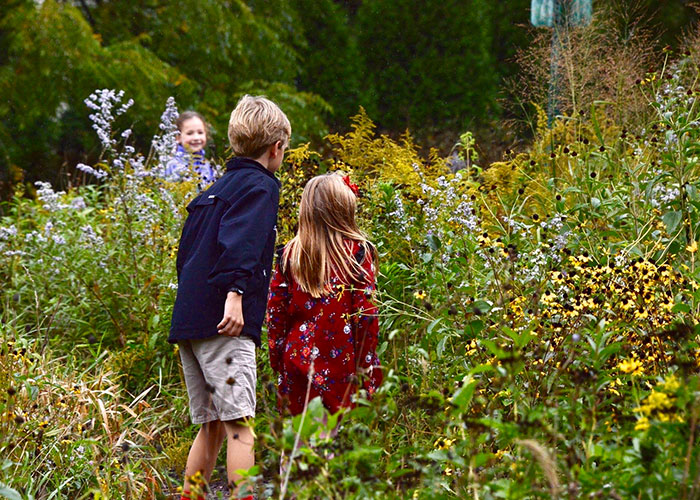 Forest Bluff School students explore the native prairie plants in the school's living land laboratory.