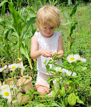 A young child spends time outdoors, touching flowers
