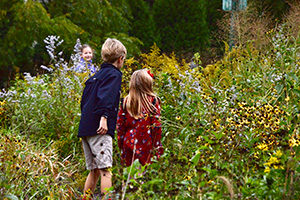 Montessori students uses their 5 senses as they explore the prairie plants outside their school.