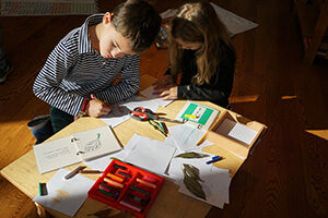 Students in a Montessori Primary classroom work on identifying different leaf shapes and types