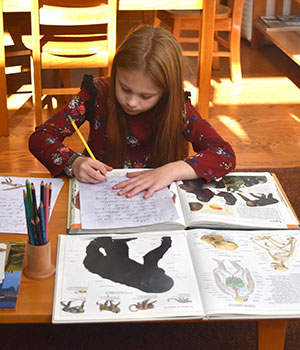 A child in a Montessori Elementary classroom conducts research and writes a report on primates