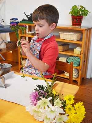 A young child in a Montessori classroom removes the leaves from a stem for flower arranging