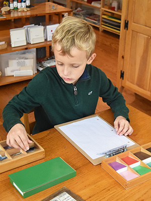A child in a Montessori Elementary class works with the Grammar Box materials