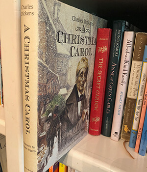 Classic literature lines a bookshelf