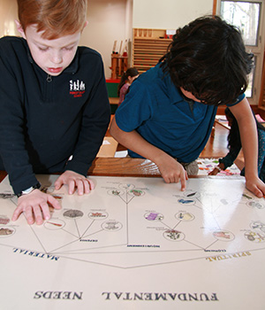 Montessori students examine a chart of the universal Fundamental Needs of all humans.