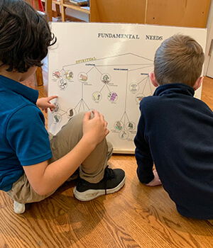 Montessori in the Elementary years study the Fundamental Needs chart as part of the Great Lessons